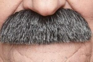 how to shape your mustache